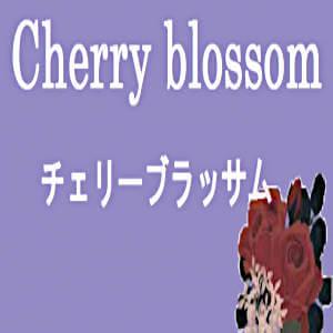 Cherry brossom